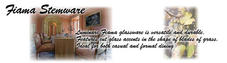 Luminarc Fiama Etched Accent Wine Glasses